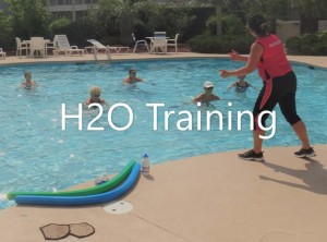 H2O-Training